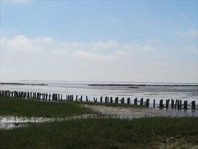 Der var meget lavvande i Vadehavet denne fredag eftermiddag.