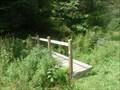 Image for Small Bridge - Natural Area - Broome Community College (SUNY) - Binghamton, NY