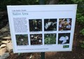 Image for Native Area - Cutler Gardens, Binghamton, NY