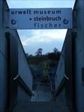Image for Urweltsteinbruch Fischer - Holzmaden, Germany, BW