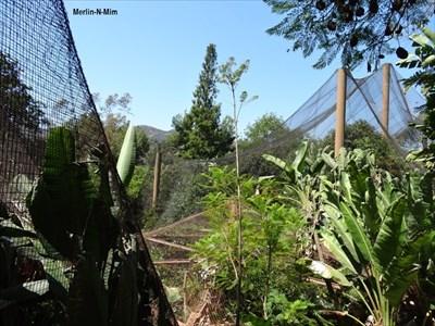 Los Angeles Zoo Aviary – Los Angeles, CA - Aviaries on Waymarking.com