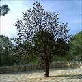 Image for For is the tree of the field man - Jerusalem, Israel