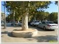 """Image for Station de taxi de la Rotonde - Edition """"Aix en Provence"""" - Aix en Provence, France"""