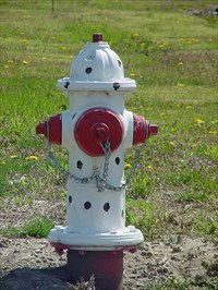 Black Spotted Hydrant