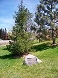Image for German American Memorial Grove - May Arboretum - Reno, Nevada