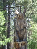 Image for Wooden Wildlife - South Lake Tahoe, CA