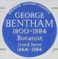 Image for George Bentham - Wilton Place, London, UK