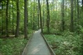Image for Great Swamp National Wildlife Refuge - Morristown NJ