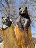 Image for Bear and Raccoons - Northglenn, CO