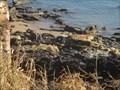 Image for Nightcliff Cliffs World War 2 Dump, Casuarina Dr, Nightcliff, NT, Australia