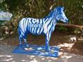 Image for Zebra MSV Duisburg - Zoo Duisburg, North Rhine-Westphalia (NRW), Germany