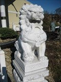 Image for Mandarin Lions