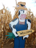 Image for Lehner Woods Pumpkin Patch - Corn Maze
