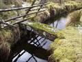 Image for Small Granite Bridge, Peatcot, near Princetown, Dartmoor.