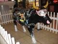Image for Cow - Xscape, Marlborough Gate, Avebury Boulevard, Milton Keynes, UK