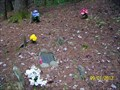 Image for Post Family Cemetery - Great Smoky Mountains National Park, TN