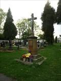 Image for Centrální kríž hrbitova / Central Cross the Churchyard  - Štoky, okres Havlíckuv Brod, CZ