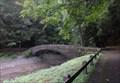 Image for Stone bridge - Fillmore Glen State Park