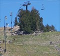 Image for Mammoth Mountain Bike Park