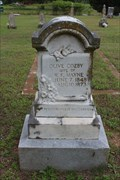 Image for EARLIEST Marked Grave in Union Chapel Cemetery - Union Chapel, TX