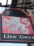 Image for Llew Gwyn, Pen Y Garreg, Trawsfynydd, Gwynedd, Wales, UK