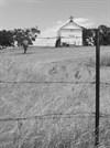 White Church, Fence and Post, Hornitos, California