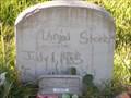 Image for Virgel Stoker - Rising Star Cemetery, La Marque, TX