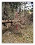 Image for TB 2419-7 Bukovina, CZ