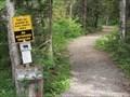 Image for Eleanor Lake Trails - Blue River, British Columbia