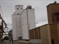 Image for Coffey Grain Inc. - Calumet, OK