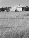 White Church and Fence, Hornitos, California
