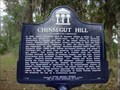 Image for Chinsegut Hill
