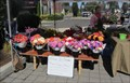 Image for Canby's Saturday Farmers Market, Canby, OR