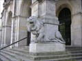 Image for Rathaus Lion