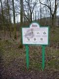 Image for Trees and Shrubs of Westport Lake - Stoke-on-Trent, Staffordshire, England, UK.