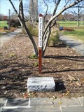 Image for Peace Pole - Baker Park - Frederick, MD
