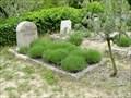 Image for Grave of Henri Cartier-Bresson