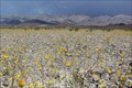 Image for Mojave and Colorado Deserts Biosphere - Furnace Creek Visitor Center, Death Valley NP, CA