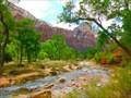 Image for Virgin River - Zion National Park - Springdale, UT