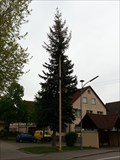 Image for Maibaum - Rohrdorf, Germany, BW