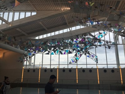 Sky Bridges, Backlit from Window, JAX Airport