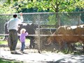Image for High Park Zoo, Toronto, Ontario