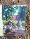 La photo de la petite fille et la terre de la platebande où sera planté fleurs et arbustes.  The photo of the little girl and the land of the flowerbed which will be planted flowers and shrubs.