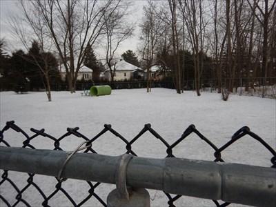 Dog park view #1