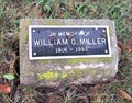 Image for William G. Miller Tree - Perrysburg, OH