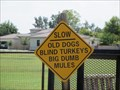 Image for Slow - Chandler, AZ