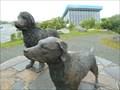 Image for Newfoundland Dog and Labrador Retriever - St. John's, Newfoundland and Labrador