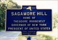 Image for Sagamore Hill