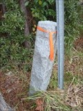 Image for NC/SC State Line Monument SW of Tabor, NC