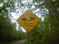 Image for Wildlife Crossing - Morpeth, Ontario
